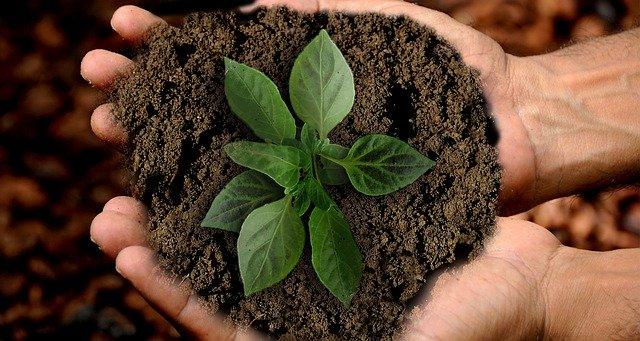 A Sustentabilidade é realmente praticada?